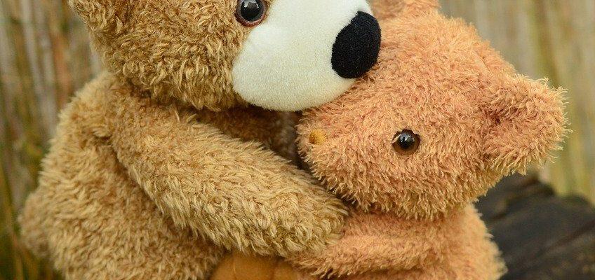 teddy, teddy bear, snuggle