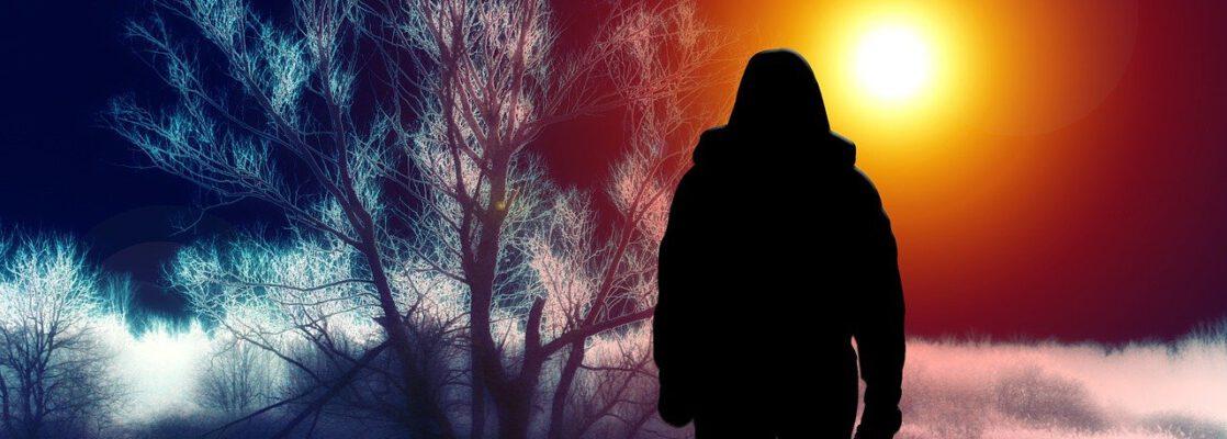 silhouette, woman, tree