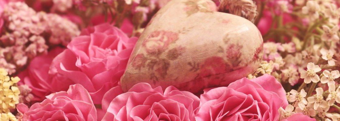 roses, heart, noble roses
